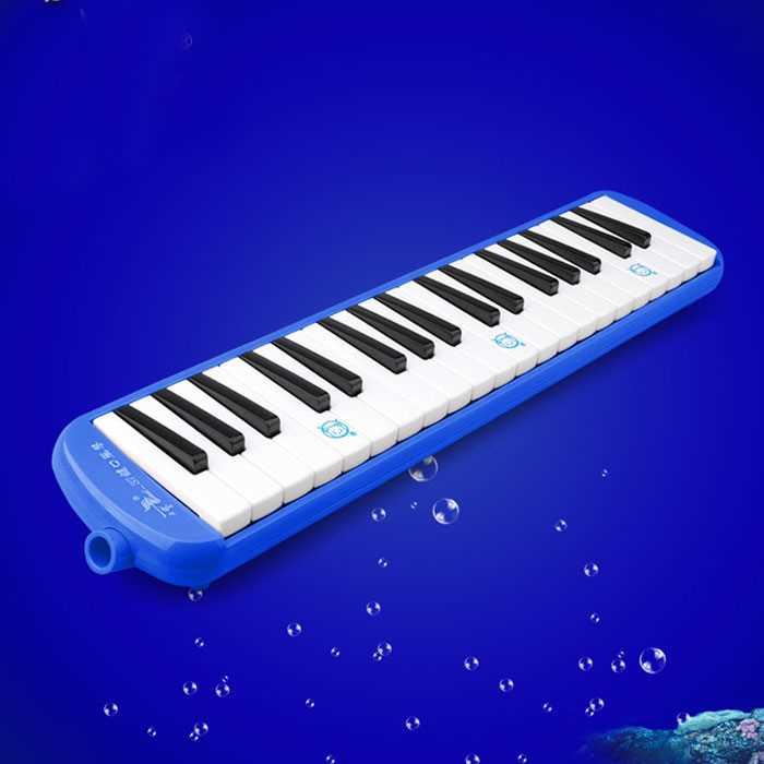 毕节口风琴