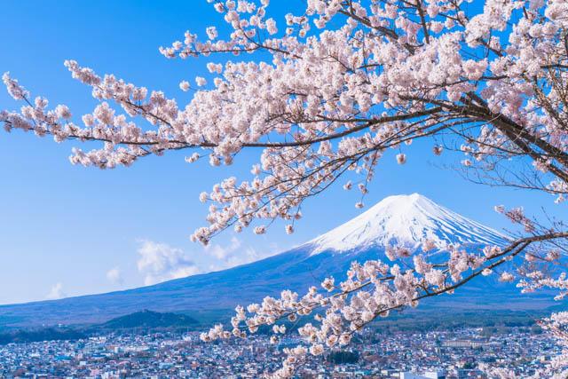 贵州到日本旅游